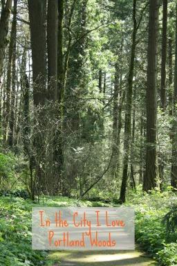 Portland woods